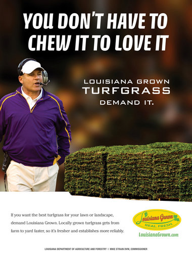 Les Miles becomes the new face of Louisiana's turfgrass industry